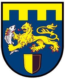 logo 307